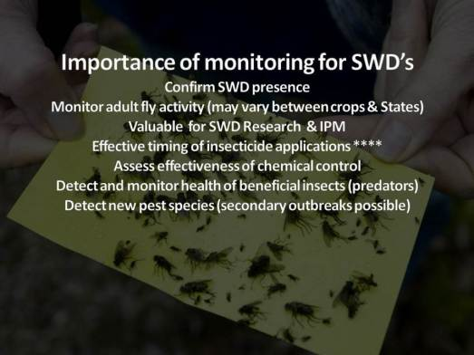 MONITORING SWD 2013 by B. Sampson